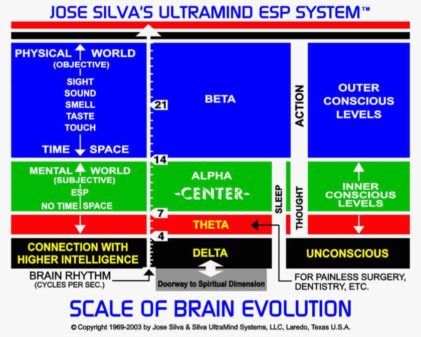 Silva scale