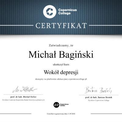 M. Bagiński - Wokół depresji
