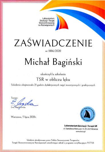 M. Bagiński - TSR lęk