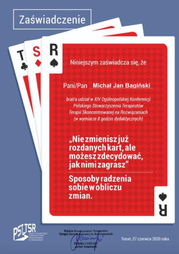 M. Bagiński - konferencja TSR