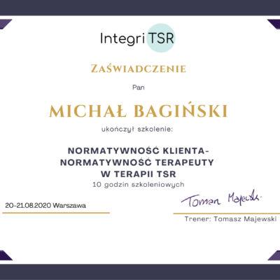 M. Bagiński - Normatywność (Integri TSR)