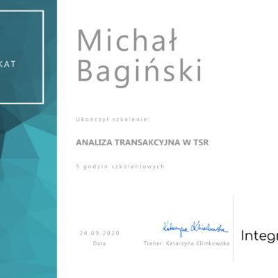 M. Bagiński - analiza tansakcyjna (integri)-1