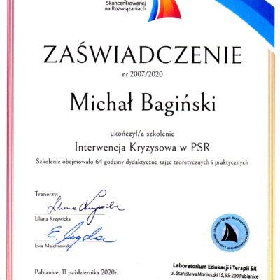 M. Bagiński - Interwencja kryzysowa w PSR