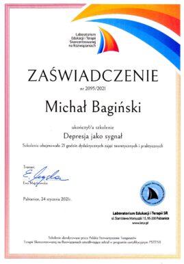 M. Bagiński - Depresja jako sygnał (LETSR)