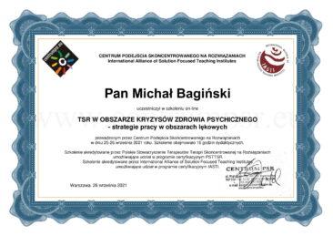 M. Bagińki - TSR wobszarze kryzysów zdrowia psychicznego